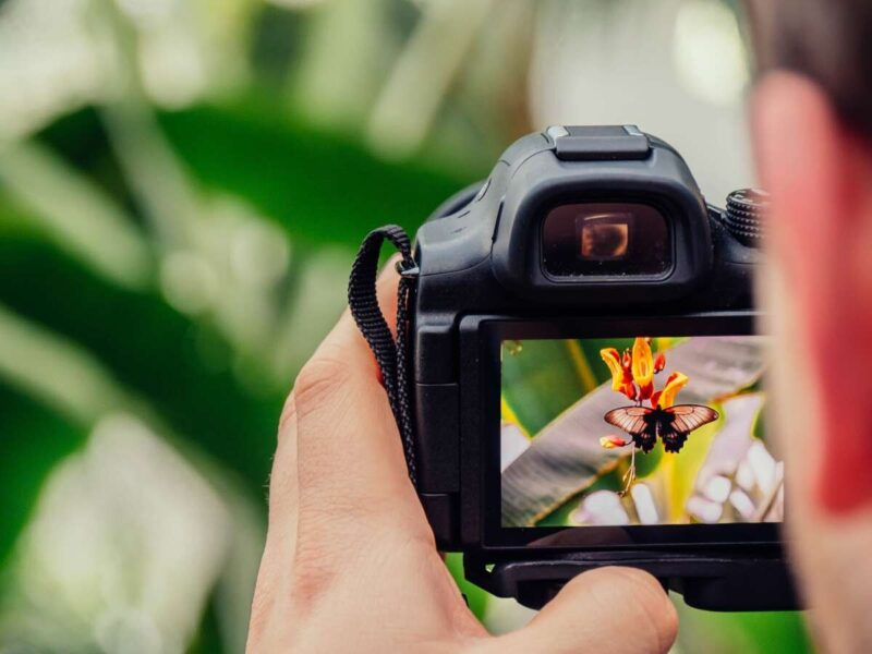 What type of photography is in demand?