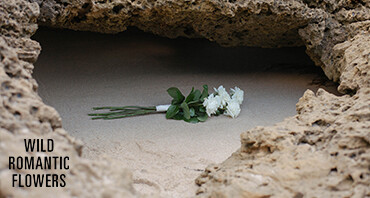 Wild Romantic Photography & Videography